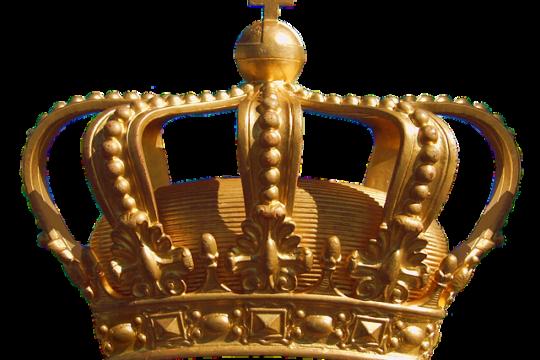 Koningsdag NIU Delfgauw open